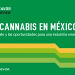 El Cannabis en México: el debate y las oportunidades para una industria emergente